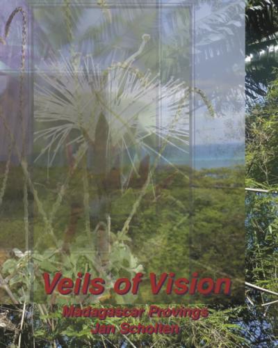VeilsVisonCover3
